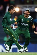 Moahmmad Hafeez was ecstatic after dismissing David Warner
