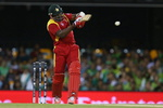 Masakadza plays the pull shot