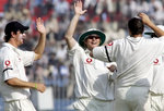 Steve Harmison celebrates after getting a wicket